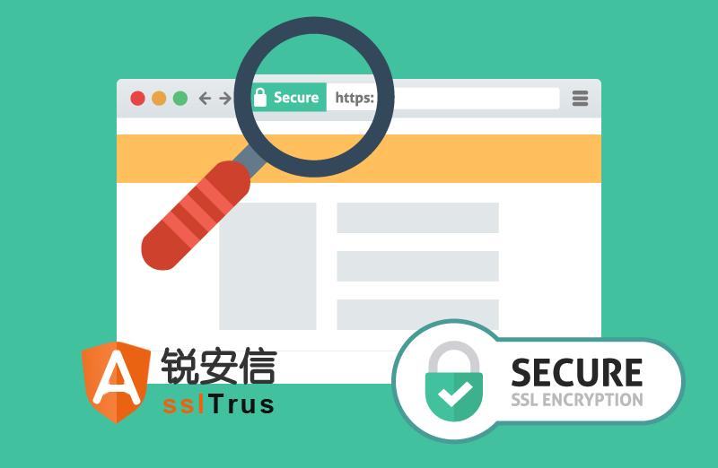 锐安信sslTrus 证书适合什么网站?